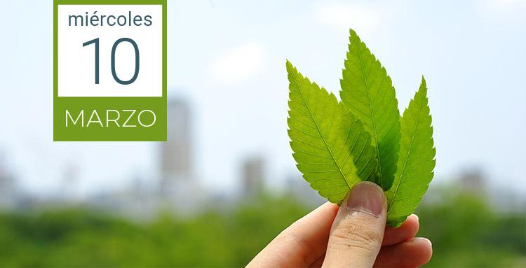 WEBINAR: La sostenibilidad y el medio ambiente